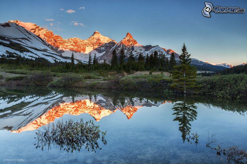 Mount Athabasca, montagne rocciose, bosco di conifere, lago, riflessione