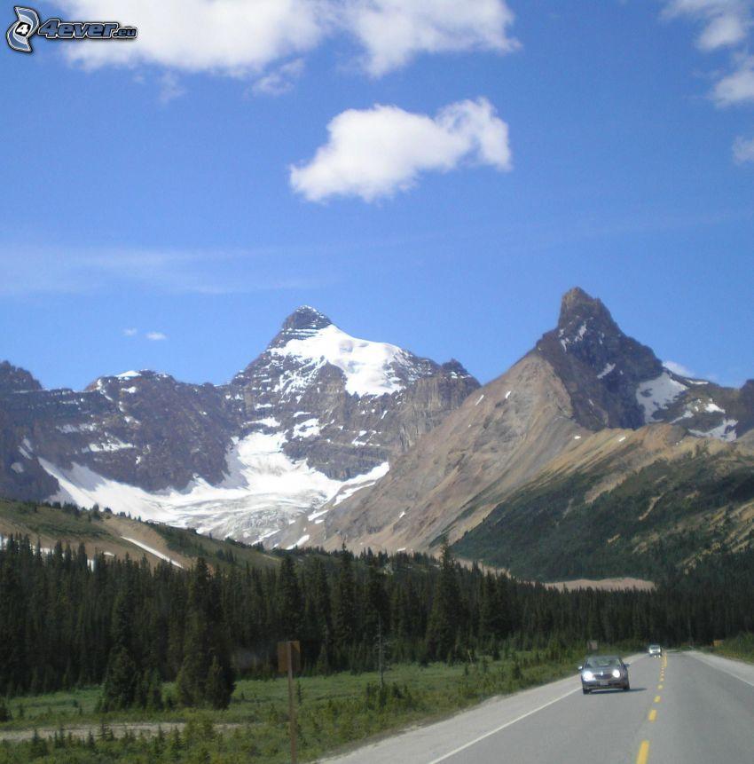 Mount Athabasca, montagne rocciose, bosco di conifere, strada