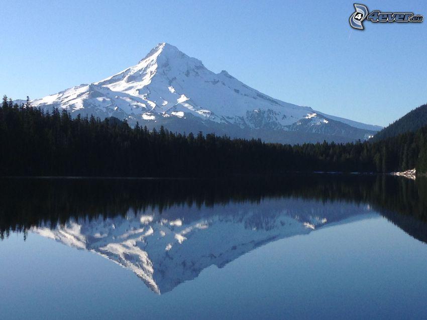 Mount Hood, montagna innevata, foresta, lago, riflessione