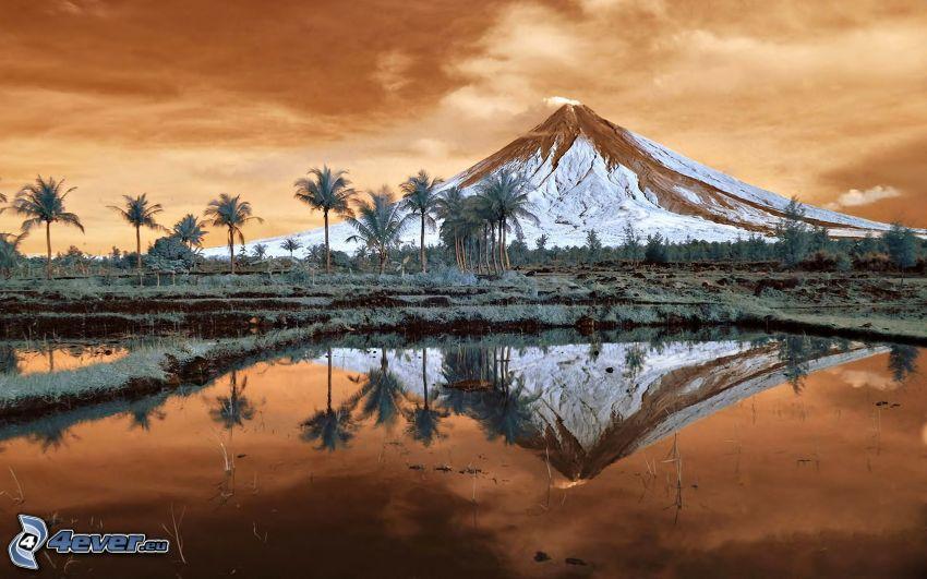 Mount Mayon, montagna innevata, lago, palme, Filippine