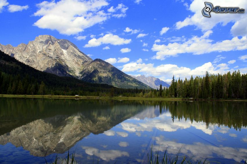 Mount Moran, Wyoming, montagne rocciose, lago, riflessione, bosco di conifere