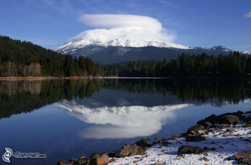 Mount Shasta, montagna innevata, lago di montagna, foresta