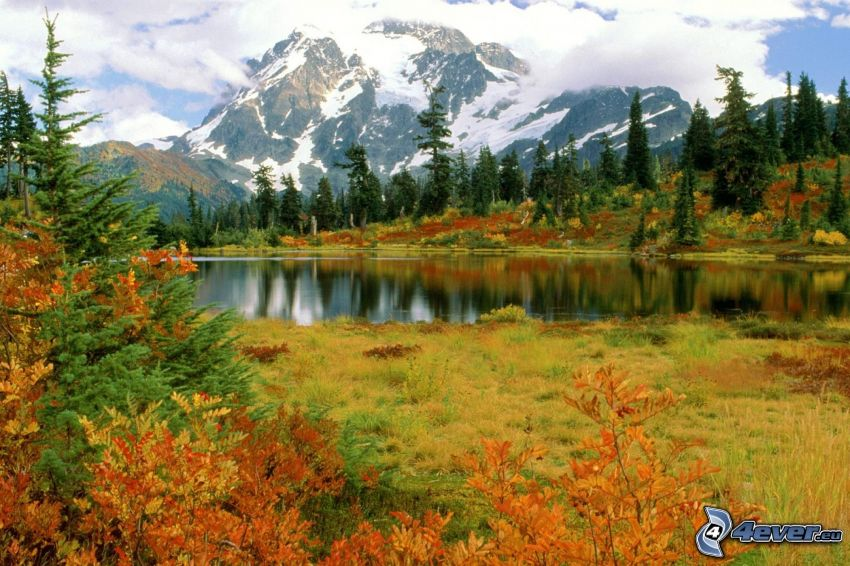 Mount Shuksan, Parco nazionale North Cascades, Washington, USA, lago di montagna, boschi colorati d'autunno