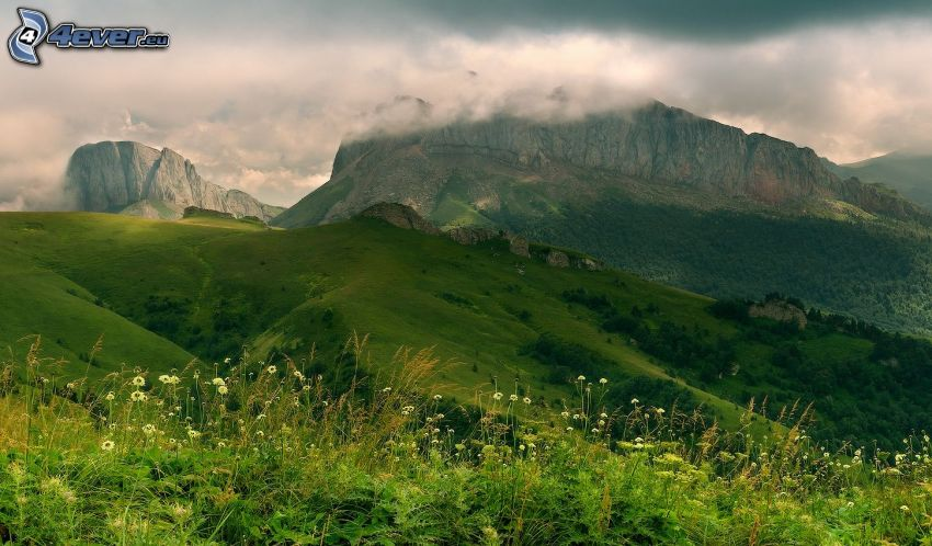 prato verde, montagne rocciose, nuvole, montagne taglie