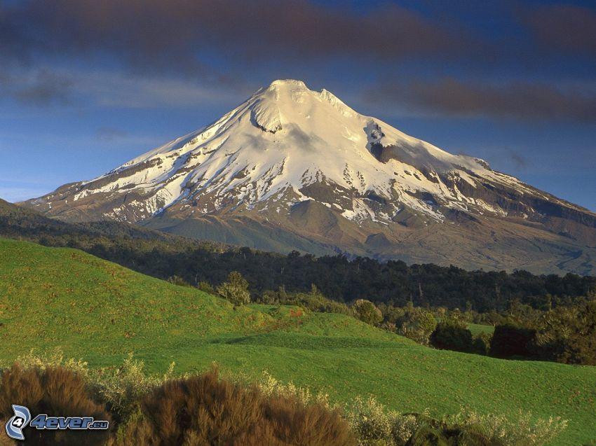 Taranaki, montagna innevata, prato