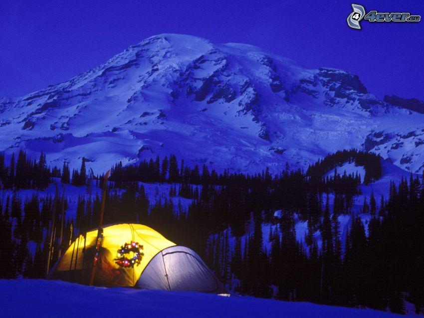 tenda, decorazione di Natale, foresta, neve