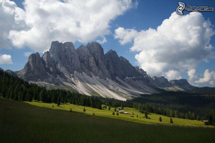 Val di Funes, prato, bosco di conifere, montagne rocciose, Italia