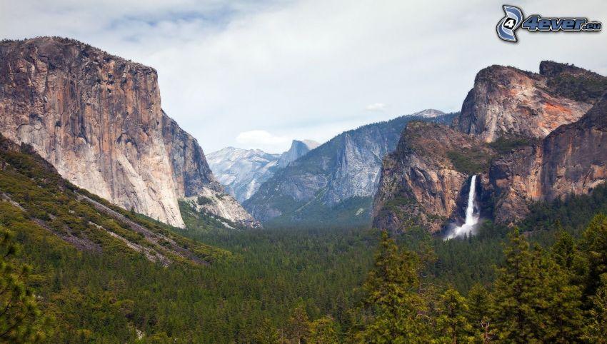 Yosemite Valley, El Capitan, montagne rocciose, cascata, bosco di conifere