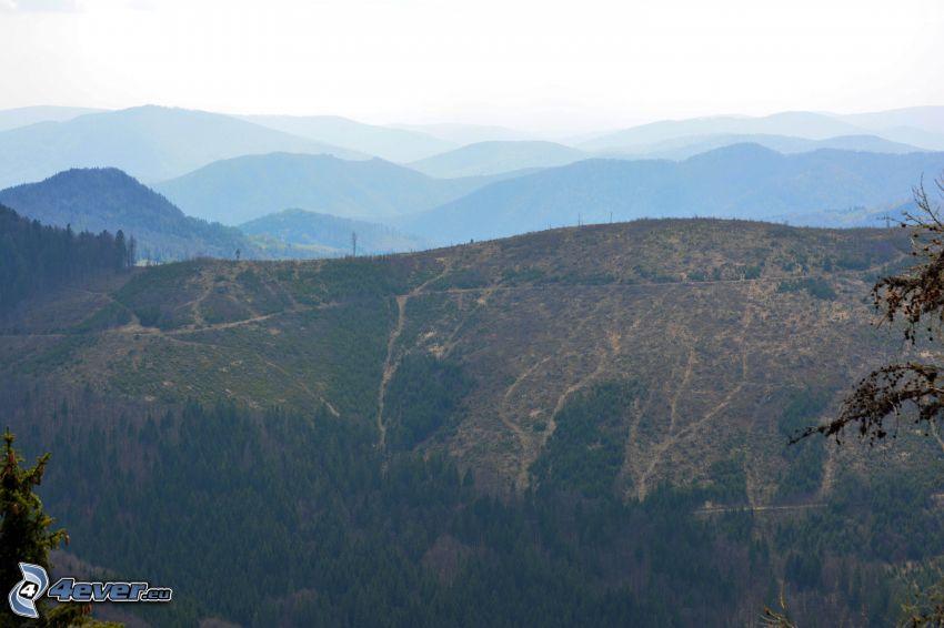 Monti Metalliferi Slovacchi, radure, montagna