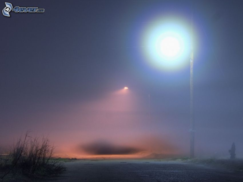 nebbia, lampione, neve