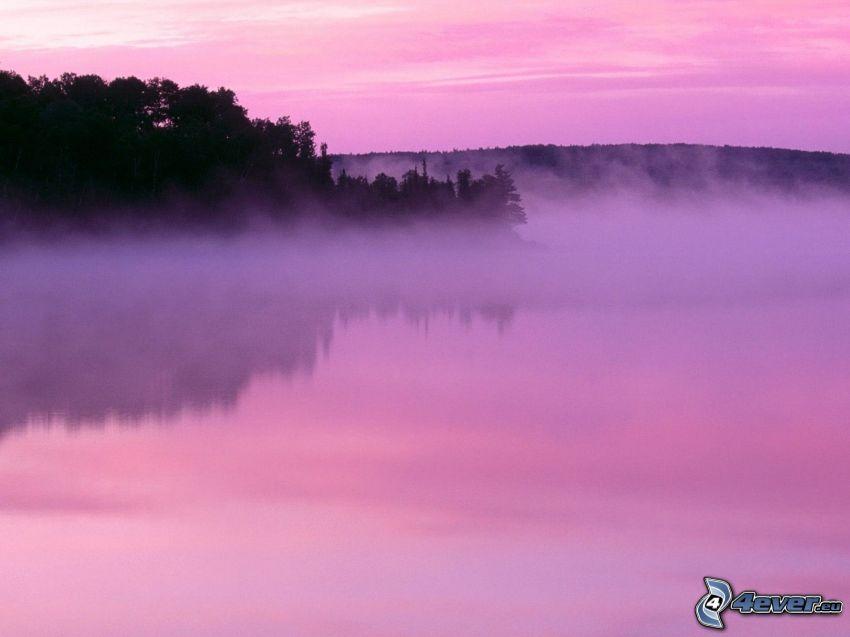 nebbia sopra un lago, costa