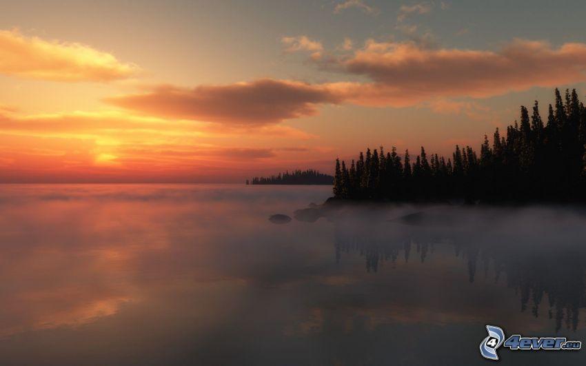 nebbia sopra un lago, nebbia a pochi centimetri dal terreno, bosco di conifere, cielo arancione, tramonto sopra il lago