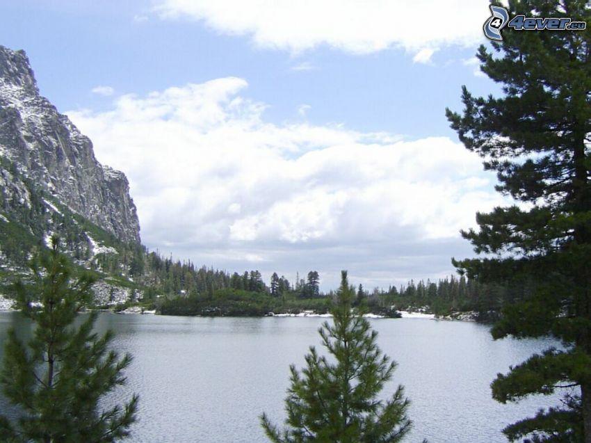 Alti Tatra, lago di montagna, alberi di conifere, rocce