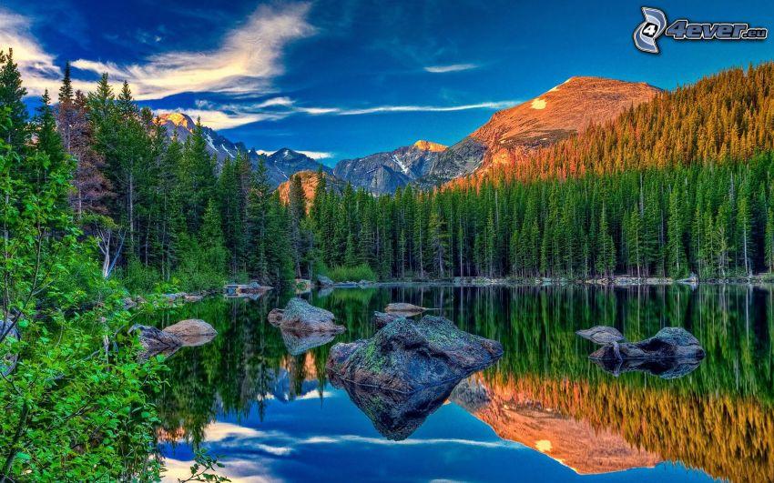 bosco di conifere, montagne rocciose, lago, HDR