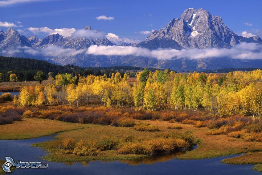 bosco giallo d'autunno, paludi, montagne rocciose, il fiume