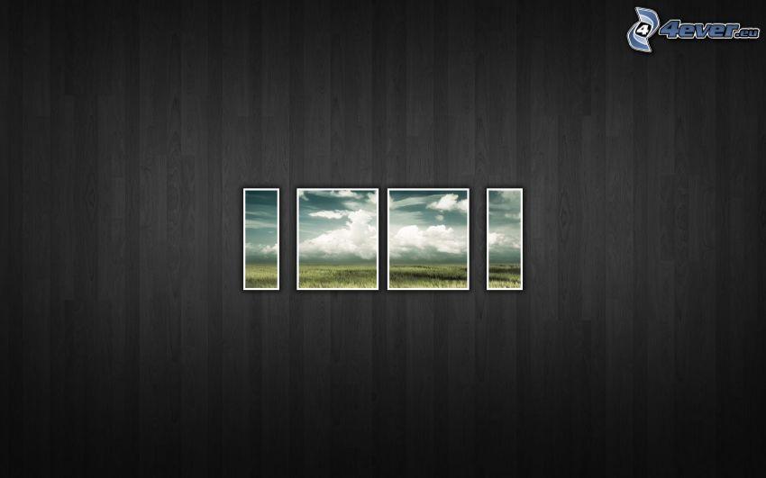 campo, immagine, muro