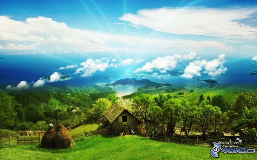 capanna, lago, prato verde, arte digitale