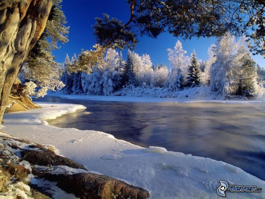 fiume gelato al tramonto, alberi congelati, inverno, ghiaccio