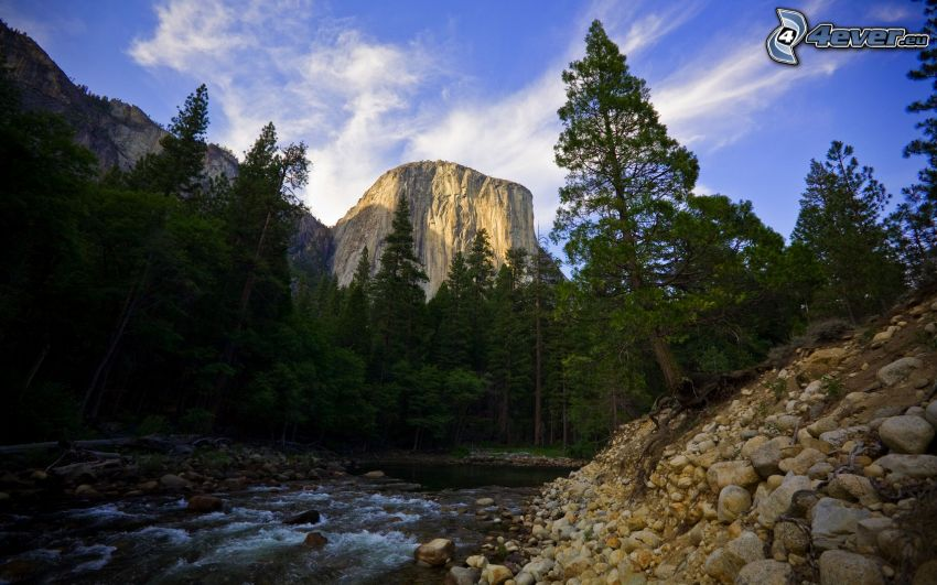fiume in Parco nazionale Yosemite, El Capitan, ruscello, alberi di conifere, montagne rocciose, pietre
