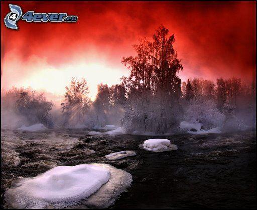 fiume nell'inverno, alberi congelati, ghiaccio