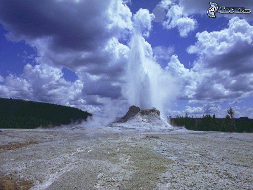 geyser, foresta, cielo
