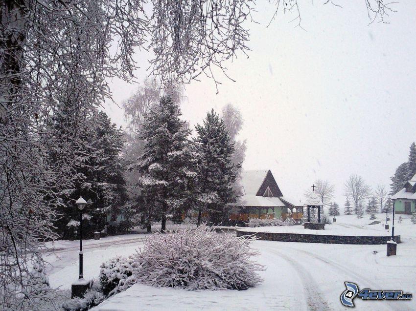 inverno, neve, fiocchi di neve