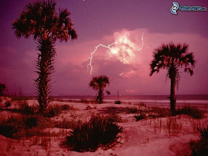 isola, palme, mare, tempesta