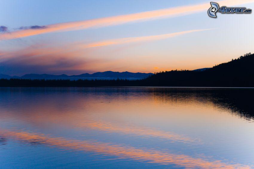 lago, dopo il tramonto, silhouette di una foresta