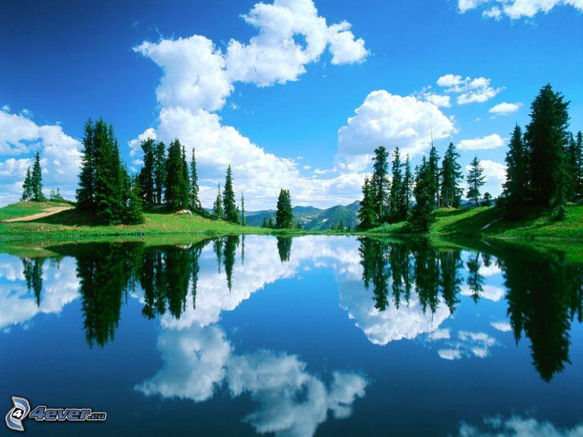lago di montagna, superficie d'acqua calma, alberi di conifere, cielo, nuvole, riflessione