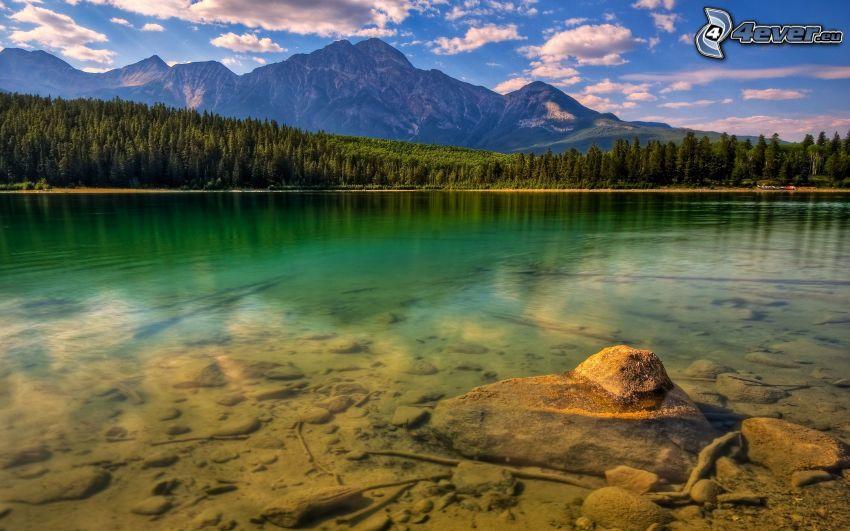 Lago nel bosco, acqua verde, pietra, montagne, alberi di conifere