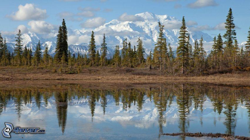 montagne innevate, alberi, lago