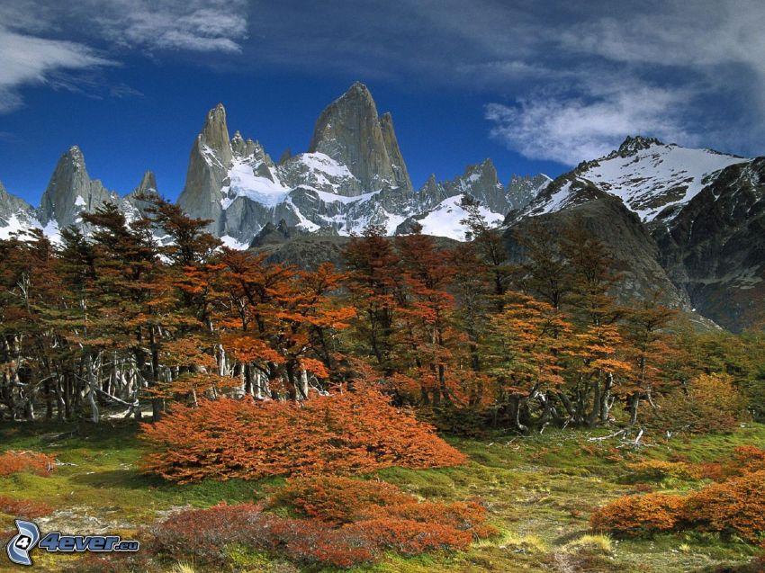 montagne innevate, montagne rocciose, alberi, cielo