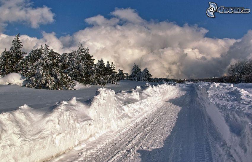 paesaggio innevato, strada innevata, alberi di conifere, nuvole