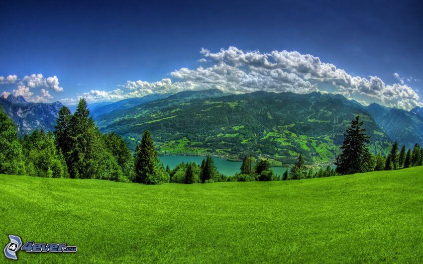 paesaggio primaverile