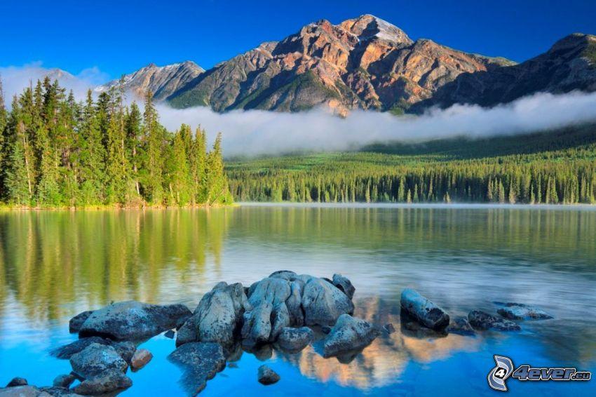 Pyramid Mountain, lago Pyramid, Alberta, Canada, bosco di conifere