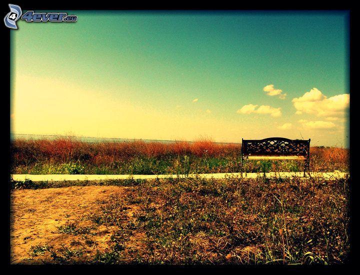 panchina, marciapiede, campo