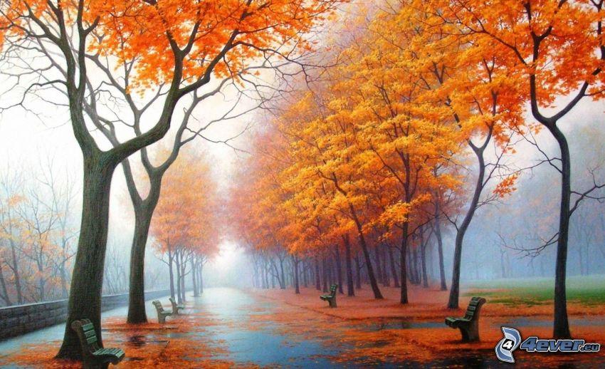 parco, alberi autunnali, marciapiede, panchine