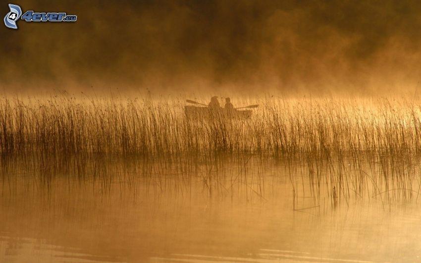 Pesca, lago, imbarcazione, mattina nebbiosa
