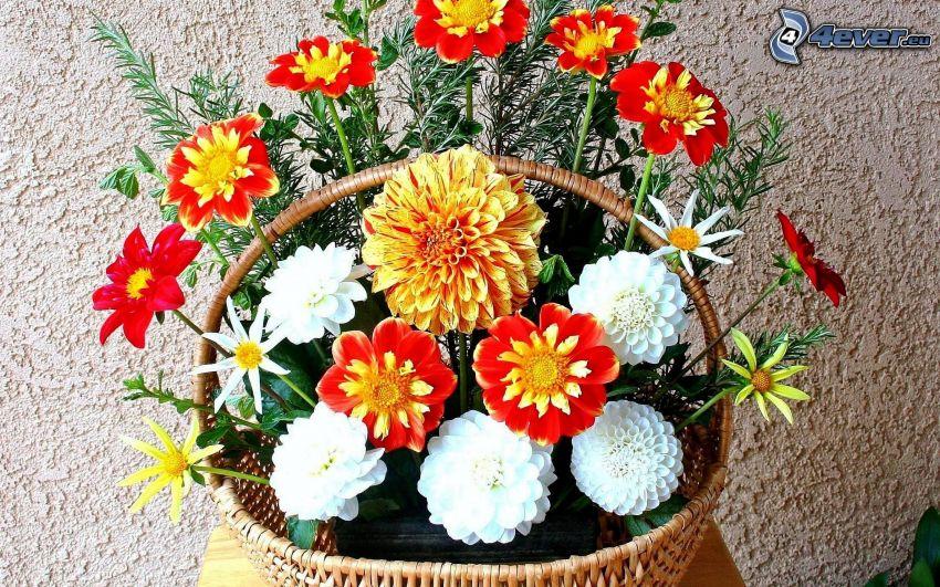 fiori colorati, cesto