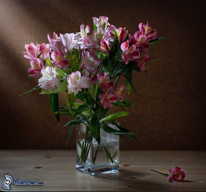 fiori in un vaso, fiori rossi