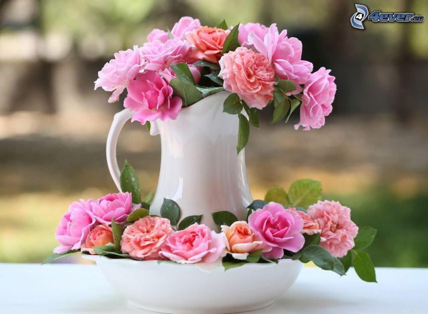 fiori rossi, fiori in un vaso