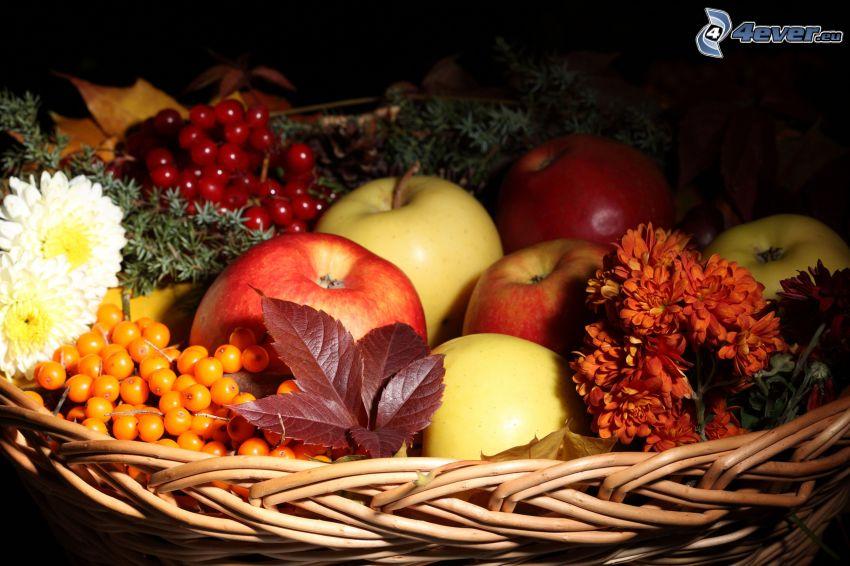 mele, fiori