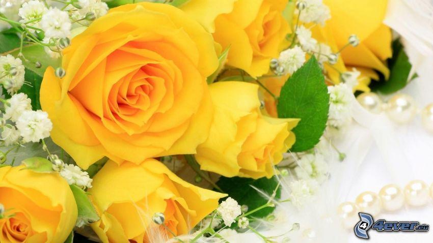 rose gialle, collana di perle