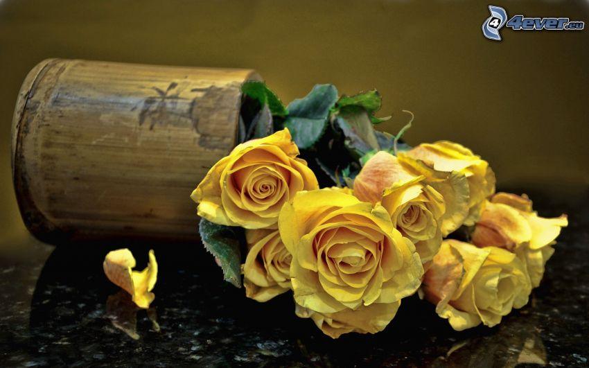 rose gialle, vaso