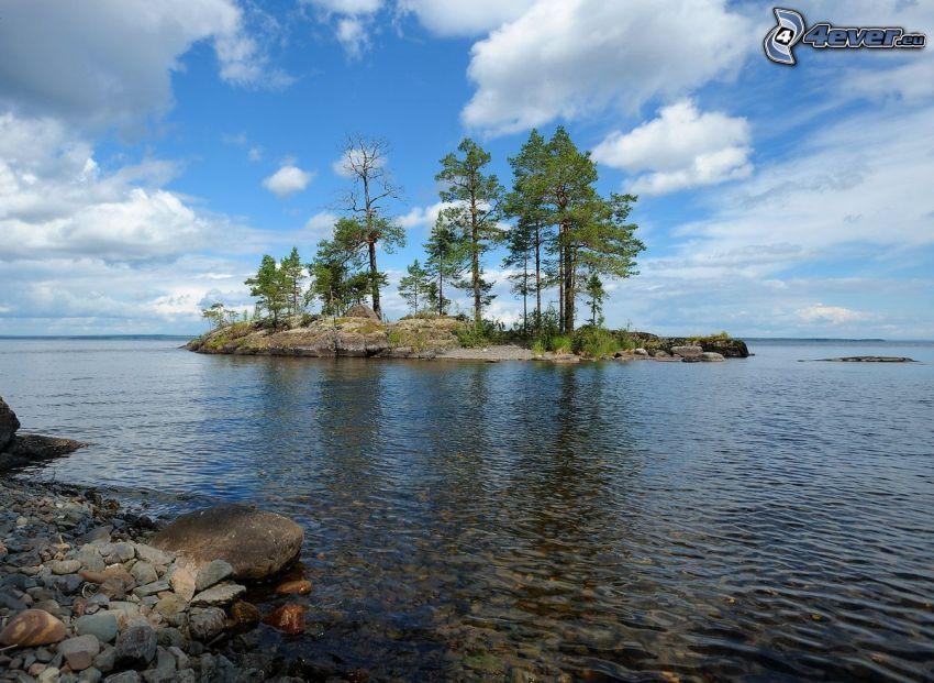 piccola isola, alberi, lago grande