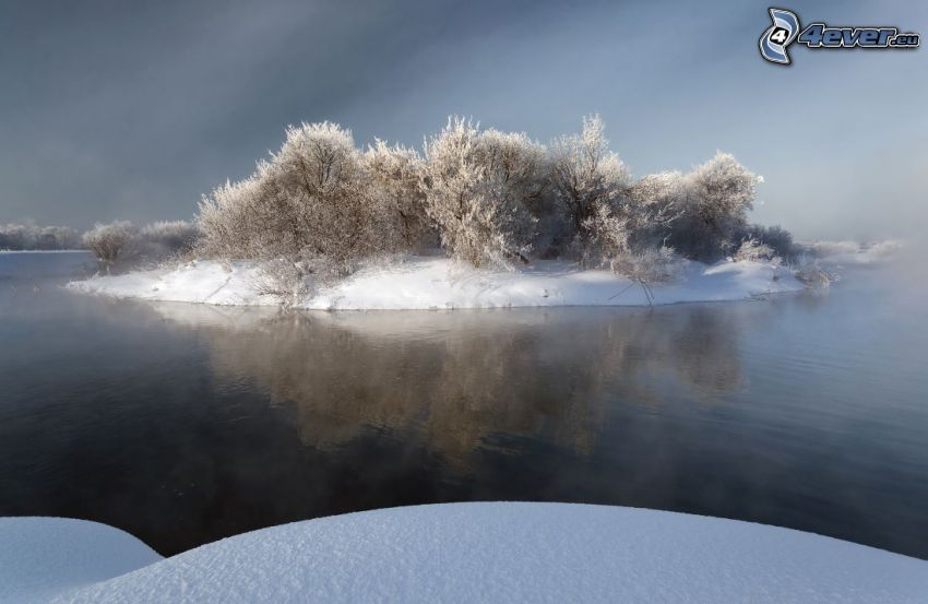 piccola isola, arbusti, neve, lago