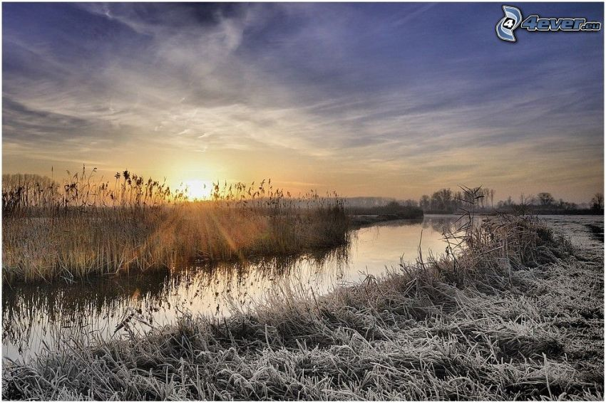ruscello, erba congelata, tramonto