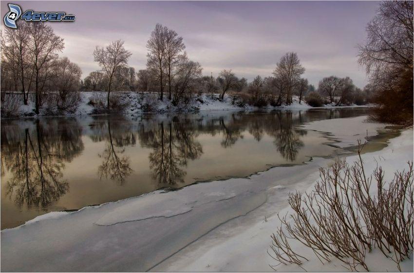 ruscello, ghiaccio, neve