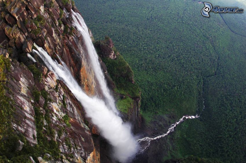 Salto Ángel, scogliera, foresta, Venezuela