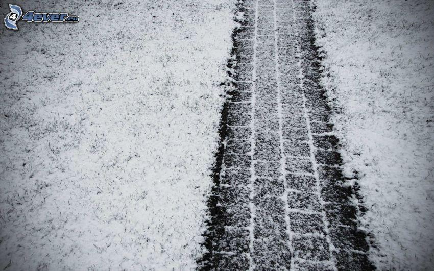 tracce nella neve, l'erba